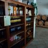 Vigna Lenuzza - Wein