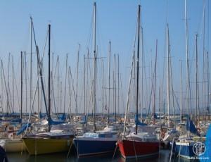 Blick auf den Hafen von Muggia